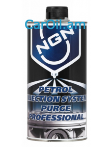 NGN PETROL INJECTION SYSTEM PURGE PROFESSIONAL 1L